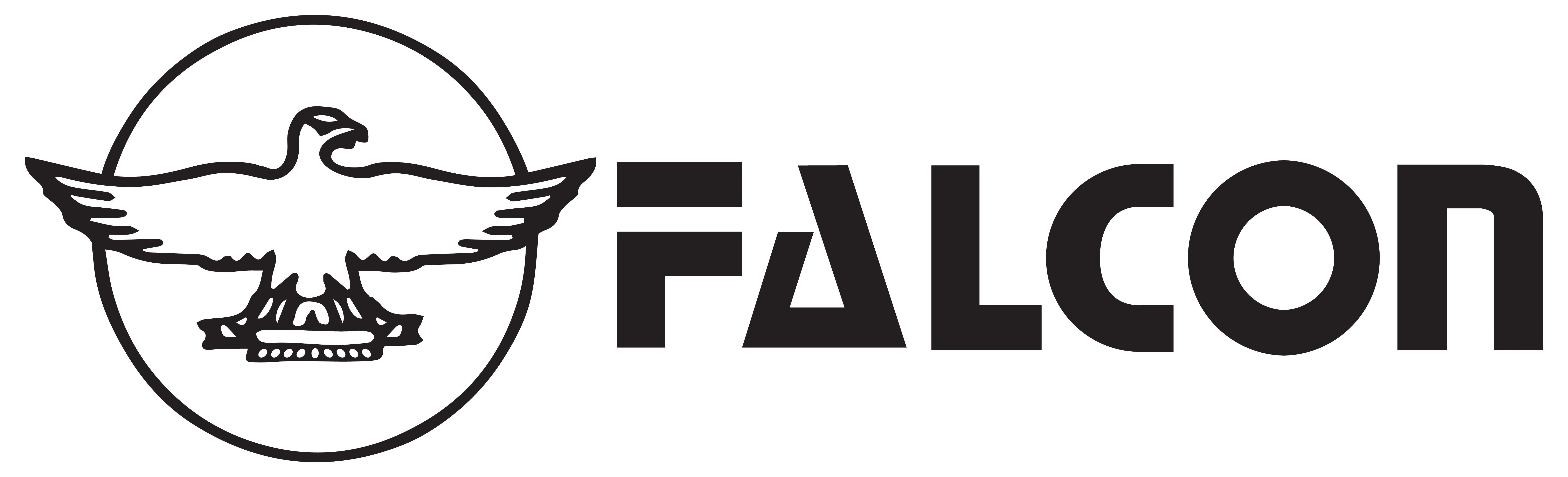 Falcon Paper
